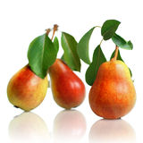 Red pears with leaves Royalty Free Stock Photography