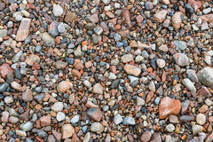 Red Pebble Royalty Free Stock Photography
