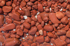 Red pebbles background Royalty Free Stock Image