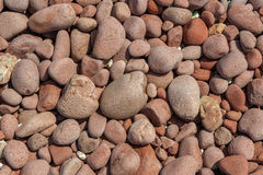 Red pebbles background Stock Photos