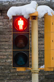 Red Pedestrian Crossing With Snow Royalty Free Stock Photo