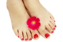 Red pedicure with flower close-up, isolated on white background royalty free stock photography