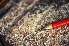 Red pencil on carpenters workshop table. Covered with wooden sawdust and scobs, macro with selective focus Royalty Free Stock Image