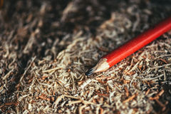 Red pencil on carpenters workshop table. Covered with wooden sawdust and scobs, macro with selective focus Stock Images