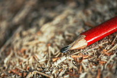 Red pencil on carpenters workshop table. Covered with wooden sawdust and scobs, macro with selective focus Stock Image