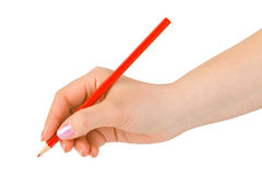 Red pencil in hand Royalty Free Stock Photo