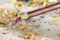 Red  pencil with sharpener shaves Royalty Free Stock Image