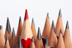 Red pencil standing out from crowd Royalty Free Stock Image