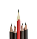 Red pencil standing out from row Stock Image