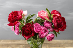 Red peonies in vase. retro styled photo. close-up Stock Photography