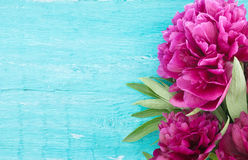 Red peony flower on turquoise rustic wooden background with empt Stock Image