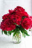 Red peony in glass vase on wood table Stock Photos