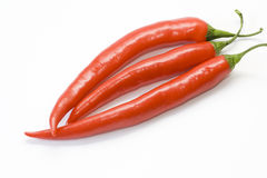Red Peperoni Royalty Free Stock Photography