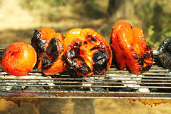 Red pepers on grill. Cooked red pepers on grill in the forest Stock Images