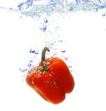 Red pepper. Are dropped into water Royalty Free Stock Photo