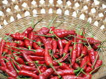 Red pepper. A pile of red pepper in  the basket Stock Photography