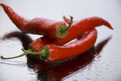 Red pepper. And drops of water Royalty Free Stock Photography