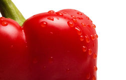 Red pepper. Don't forget to promote your portfolio and maximize your sales potential by displaying a site badge on your site. You can earn 10% more this way Royalty Free Stock Photos