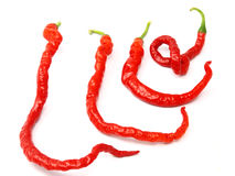 Red pepper Stock Photography