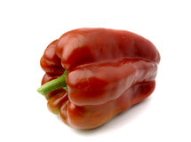 Red pepper. Isolate in white bottom Royalty Free Stock Photos