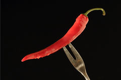 Red Pepper. On a fork royalty free stock photos