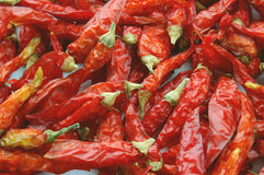 Red pepper Royalty Free Stock Photography