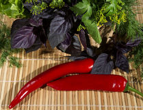 Red pepper and Basil and parsley in wicker basket Stock Image