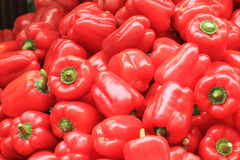Red pepper bells vegetable background Stock Photography