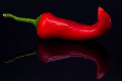 Red Pepper on black background Royalty Free Stock Photos