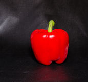 Red pepper  on black background Stock Photography
