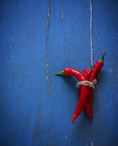 Red pepper on blue wooden background. Stock Images