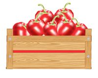 Red pepper in box Royalty Free Stock Images