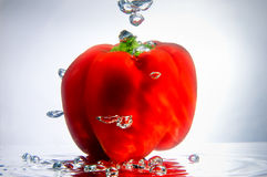 Red Pepper in Bubbles Stock Image