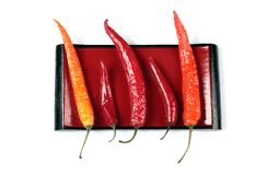Red pepper chili Royalty Free Stock Photography