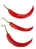 Red pepper chili set Royalty Free Stock Image