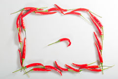 Red pepper chilli Stock Photography
