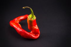 Red pepper on dark backgeround. Red pepper on dark background with vignette Stock Photo