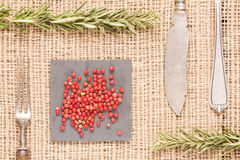 Red pepper on dark plates with rosemary, antique forks, spoon an. Red peppercorns on dark plate with rosemary, antique forks, spoon and knife. Rustic background Royalty Free Stock Photo