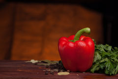 Red pepper on dark wood background with herbs Stock Images