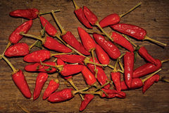 Red Pepper. Digital thermometer with Celsius and blank LED stock photography