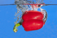 Red pepper dropped in water. Royalty Free Stock Photography