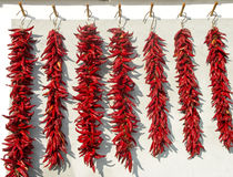 Red pepper drying Stock Image