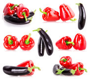 Red pepper eggplant Royalty Free Stock Photos