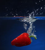 Red pepper falling into water Stock Photography