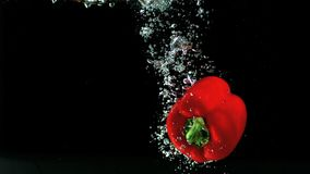 Red pepper falling in water and floating stock video