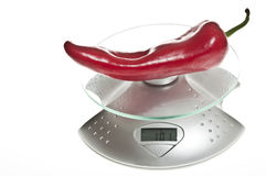 Red pepper on food scale Royalty Free Stock Photo