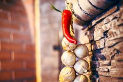 Red pepper garlic beams hanging on the texture wall stock images