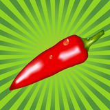 Red pepper on a green background Royalty Free Stock Photography