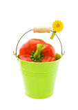 Red pepper in green bucket. Healthy cooking with fresh red pepper in pretty garden bucket. Isolated on white background stock photos