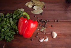 Red pepper, herbs and spices on dark wood. Table Stock Photos